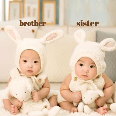rodzina, brat, siostra po angielsku