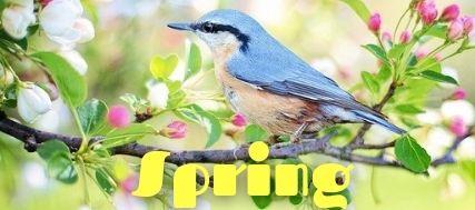 wiosna po angielsku