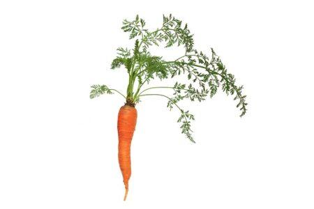 warzywa po angielsku ćwiczenie na słówka